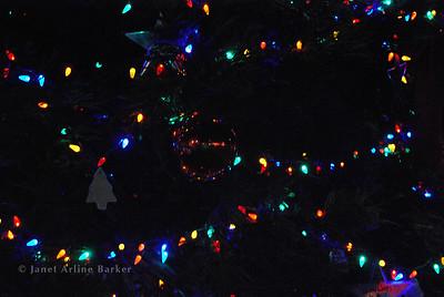 DSC_2642-tree lights-pp