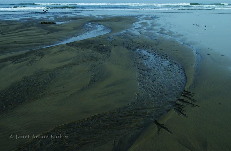 DSC_4594-sand-sea-pp