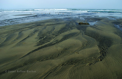 DSC_4610-sand-sea-pp