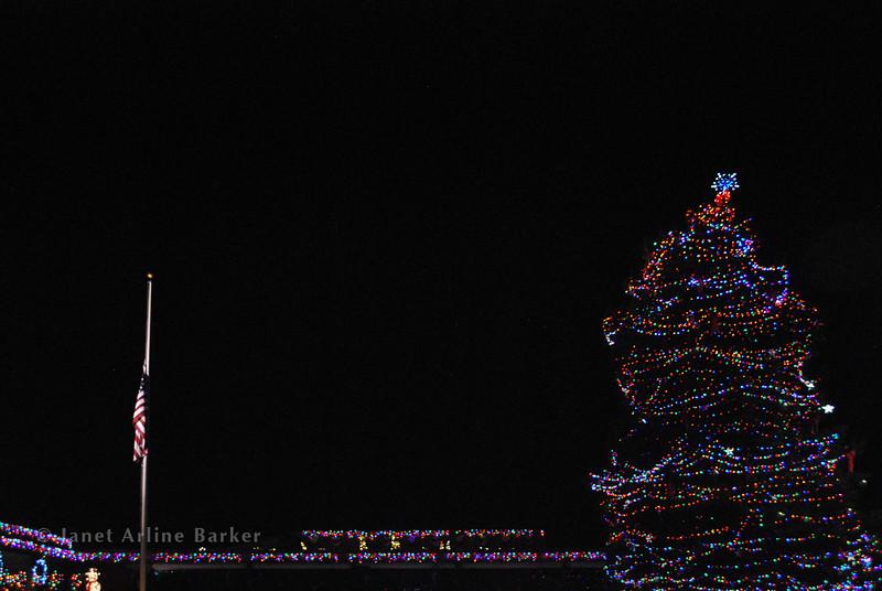 City Hall-flag-tree-pp