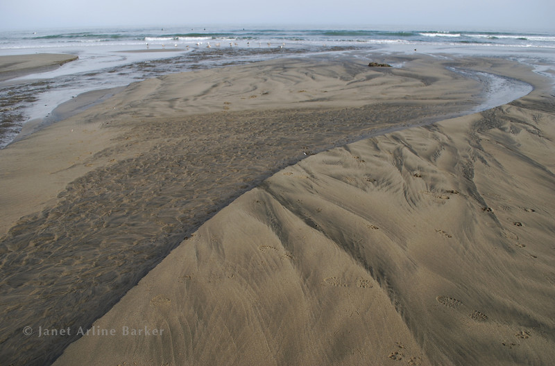 DSC_4602-sand-sea-pp