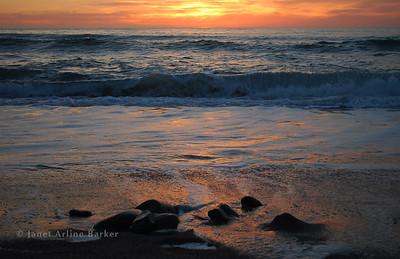 DSC_0491-sunset-rocks-pp