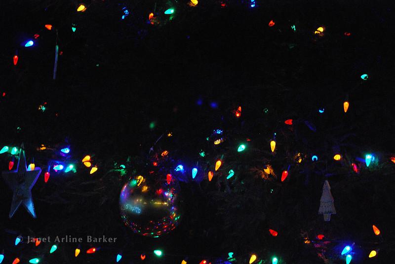 DSC_2648-tree lights-pp