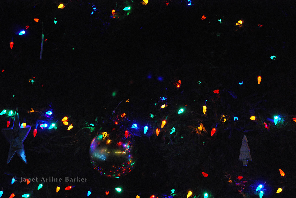 DSC_2648-tree lights-pp