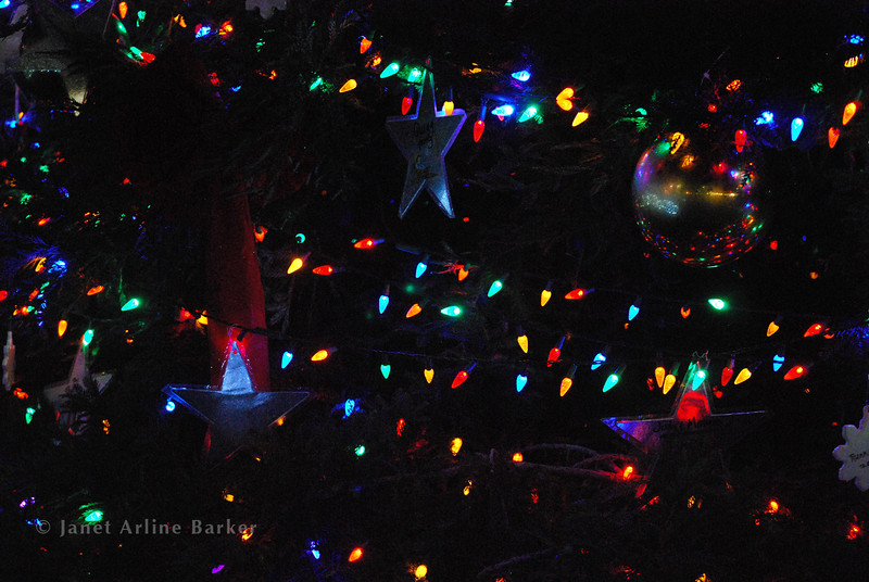 DSC_2639-tree lights-pp