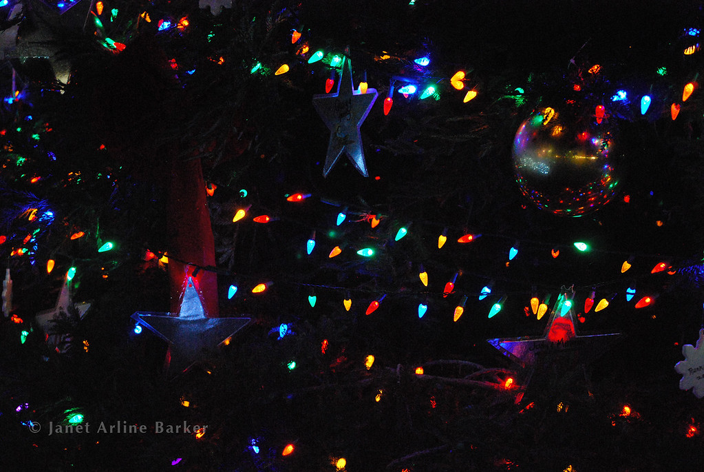 DSC_2639-tree lights-pp