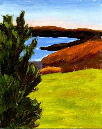 Art Barb Paintings