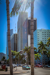Downtown Miami at Biscayne Blvd