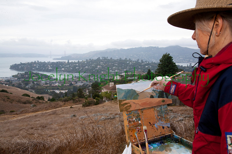 """Baywood Artist  Christin Coy   paints the Tiburon ridge and view that will disappear forever if the hills in the distance known as """"The Martha Property"""" are developed as planned with 32  8 to 10,000 square foot homes on Sunday, October 17, 2010. 100 original paintings will be on sale at the Bay Model in Sausalito  with a reception for the artists on Friday, October 22 from 6:00 to 8:00PM. Painting demonstrations will be held at the gallery on Saturday, October 23, 2010 from 9:00am to 4:00pm. Gallery Hours are Tuesday through Saturday 9am-4pm  and 50% of the proceeds go to the Marin Open Space Trust and the Marin County Open Space District. Baywood Artists is a group of professional landscape painters dedicated to preserving the environment for future generations to enjoy.(Jocelyn Knight Photo)"""