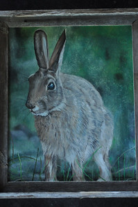 Eastern Cottontail - Oil - Barnwood Frame