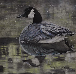 Canada Goose - Pastel - Matted and Framed with Glass