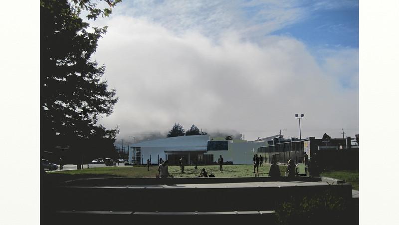 fog, Albany CA