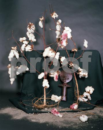 "Bill Sanders Fine Art Work, ""Mixed Media Photography"""