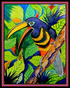 1a-Many-banded Aracari, 9x12, watercolor, april 6, 2018.