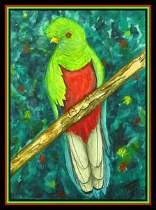 1-Crested Quetzal, Peru, 9x12, watercolor, nov 28, 2017