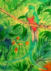 1a-Resplendent Quetzel, Panama,11x15, watercolor, nov 6, 2015.