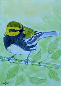 1-Black-throated Green Warbler. 4x6, watercolor, nov 17, 2015