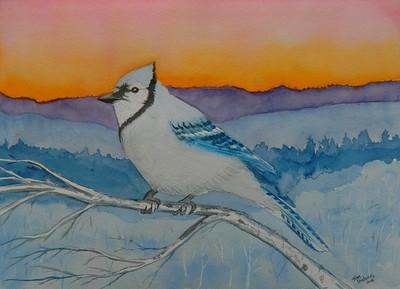 1-Blue Jay #2, 10x14, watercolor, may 25, 2016.