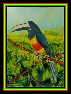 1-Black-necked Aracari - Venezuela, 9x12, watercolor, aug 9, 2017