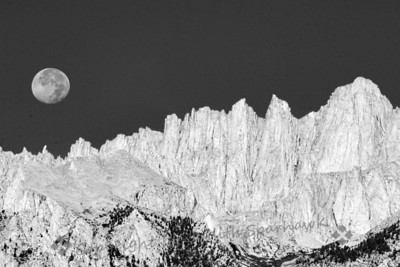 Moonset Over Mt. Whitney ~ In my July East Sierra trip, one morning the almost-full moon was about to set over the rugged peaks, moving toward Mt. Whitney.  As the sun rose higher, the pale gray peaks glowed almost white, giving a ghostly look.  I decided to try it in black and white for more drama.                  Judith Sparhawk