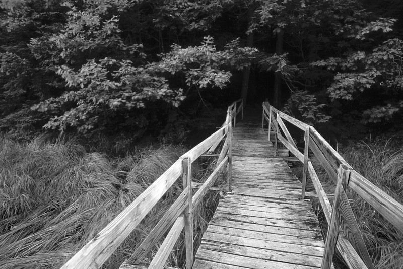 MaineB&W field c bridge Untitled-11 edit