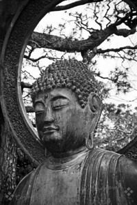 "Buddha in Black & White ~ This close-up of Buddha is from the large statue in the Japanese Tea Garden in Golden Gate Park in San Francisco. I grew up across the bay from ""the city"" as SF is called.  As kids we used to visit Golden Gate Park and stop for treats in the tea garden.  I always admired this statue.  The last time I was in SF I visited old favorites, and took this shot.  After cropping the image, I decided to try it in B&W."