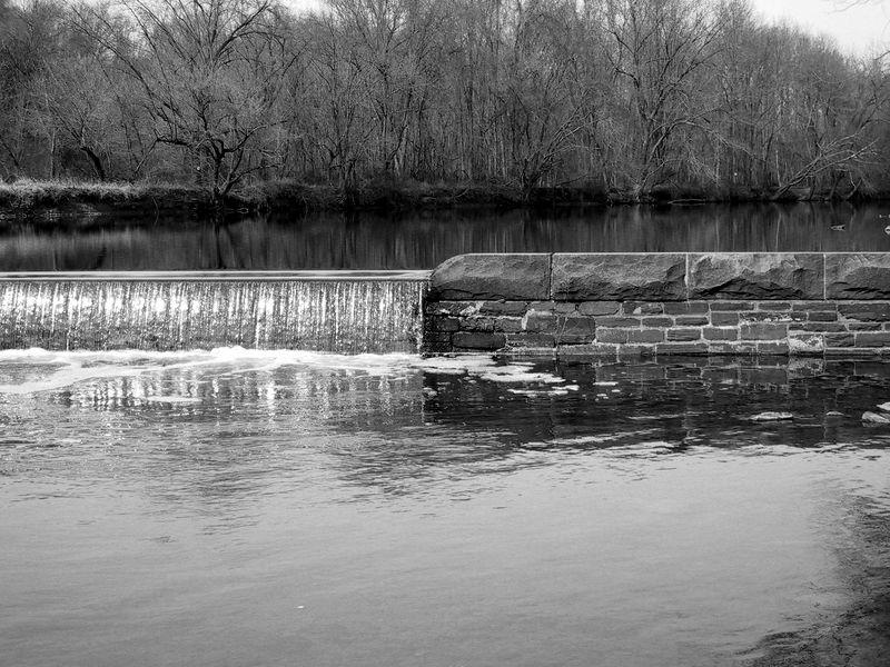 Tyler State Park<br /> Pennsylvania<br /> Black & White version