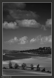 Rolling Hills Israel