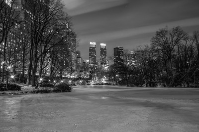 The Time Warner's buildings in the background of the pond, in Central Park.