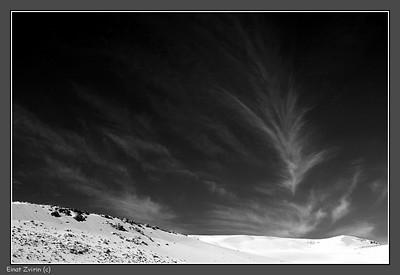 Feathers Kesuy Dunes, southern Israel
