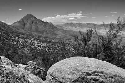 View to the north, San Augustin Range; NM