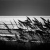 Seaside Repose<br /> Oak Island, North Carolina<br /> USA