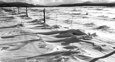A winter fenceline late on a January afternoon near Walden, Colorado.  As you might guess from the drifting, it's kind of a windy place!