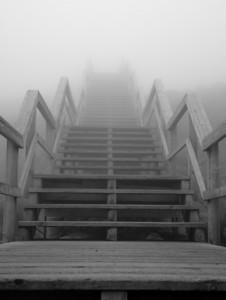 foggy stairs at Mt. Washington