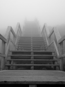foggy stairs at Mt. Washington