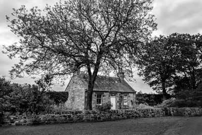 A perfect cottage overlooking the Craigielaw golf course in Scotland.
