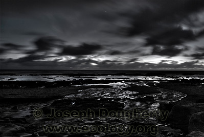 Tidepools at dusk.  © Joseph W. Dougherty, MD. All rights reserved.