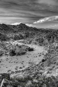 Dry desert arroyo in the Santa Rosa mountains above Palm Springs.  © Joseph W. Dougherty, MD. All rights reserved.