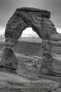 Delicate Arch;  Arches National Park, Utah.  © Joseph W. Dougherty, MD. All rights reserved.