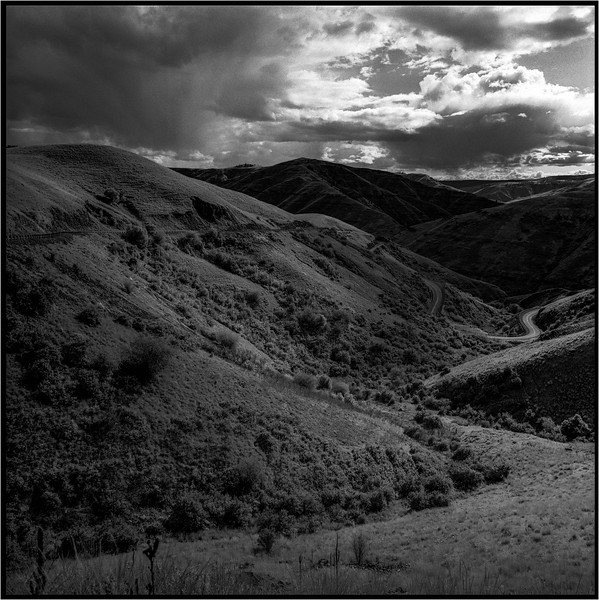 Rollei Infrared<br /> Stand 50 min