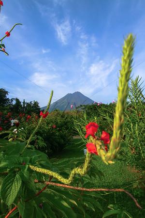 Blissful Costa Rica