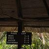 Amazon Village -21-21