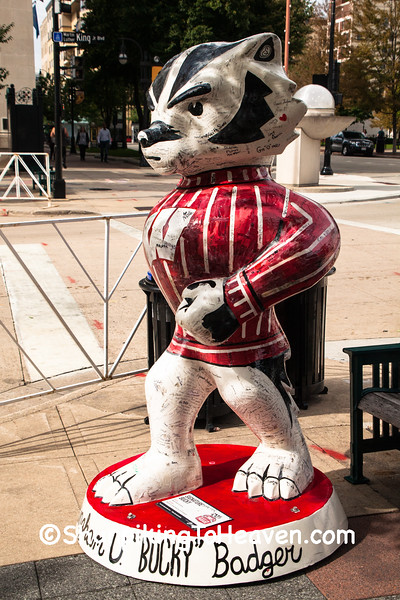"""Signature Bucky"" Statue, Madison, Wisconsin"