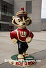 """And On Wisconsin"" Bucky Statue, Madison, Wisconsin"