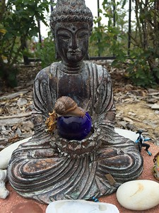 Snail hanging with Buddha
