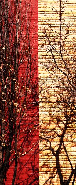 """""""Property Line""""<br /> Image # DD23"""