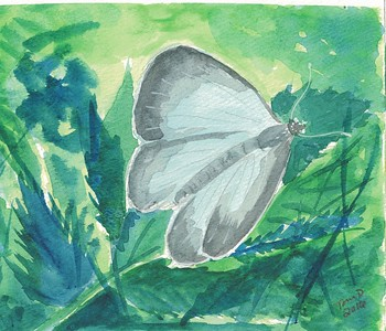 Spring Azure, 4.5x6, watercolor, march 18, 2016.j