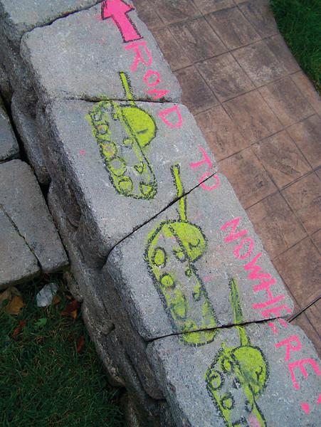CHALK4PEACE 2008  BICENTENNIAL PARK, GENEVA, NY photo: Chapin Traugott