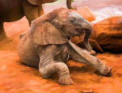 BabyElephant-Canvas__D3C3329-Edit-2