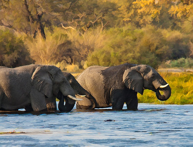 ElephantWaterCanvas_DSC7305-Edit